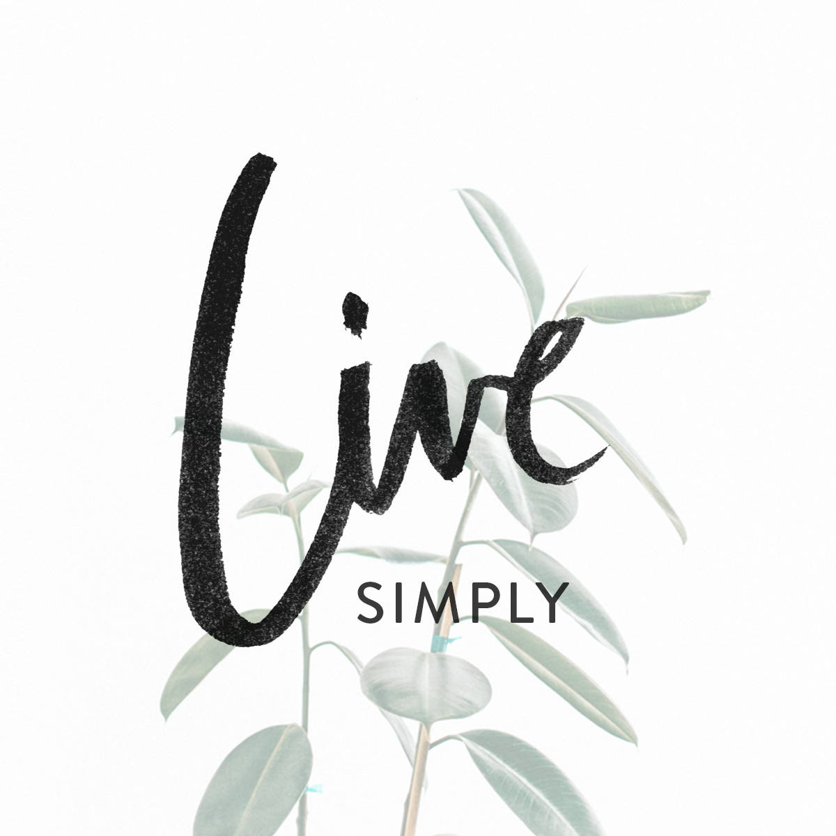 live-simply-kinlake-b