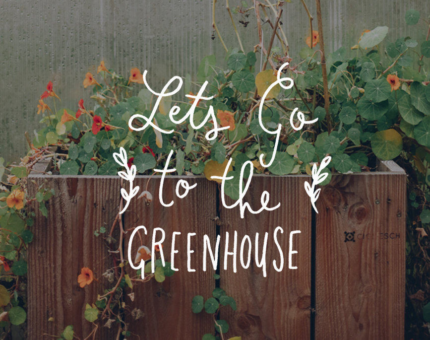lets-go-to-the-greenhouse-esch-luxembourg-prev