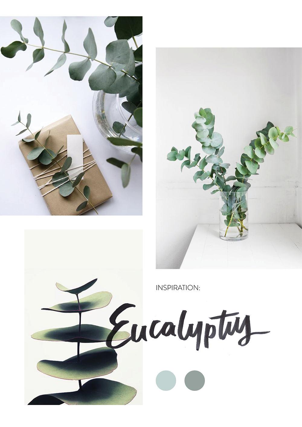 eucalyptus-moodboard-insta3