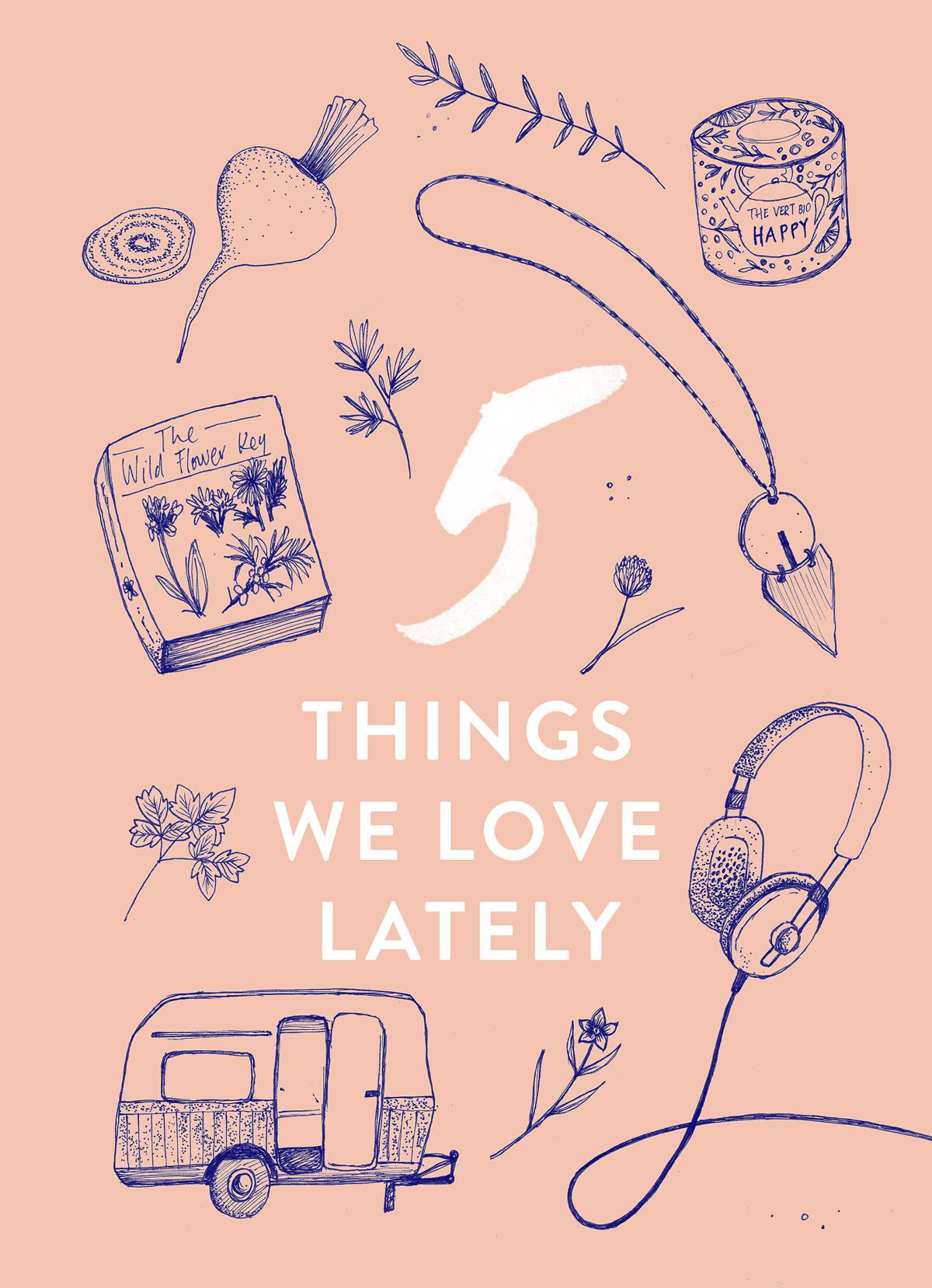 Illustration-5-Things-Kinlake-2