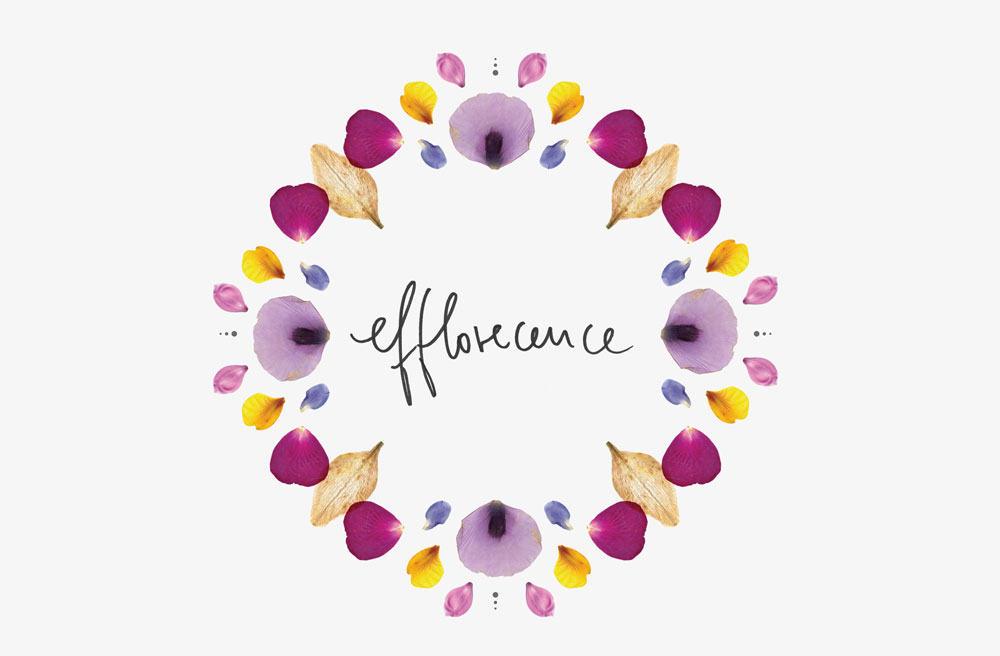 Efflorescence-kinlake-flower-petals-pattern-horizontal