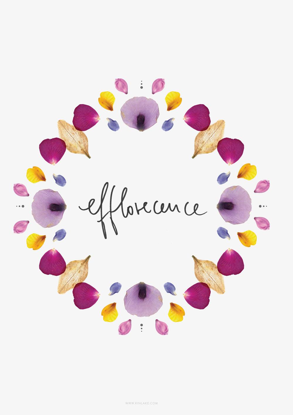 Efflorescence-kinlake-flower-petals-pattern
