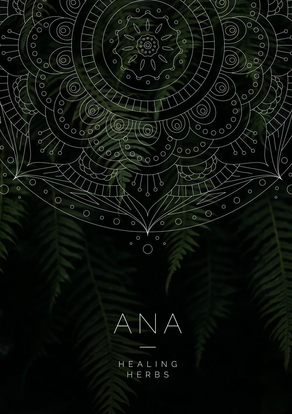 Kinlake-Ana-Herb-Branding-Poster