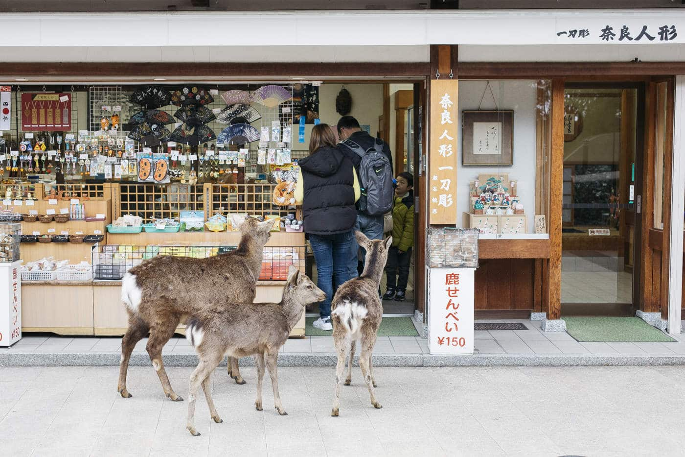Kinlake-Japan-City-Lifestyle-9485