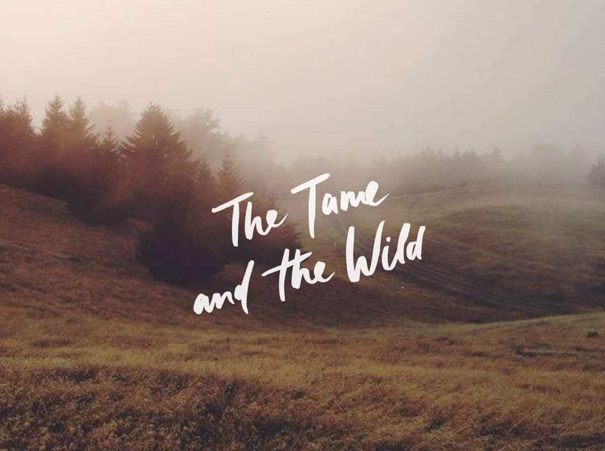 Tame-wild-Pres-03-h