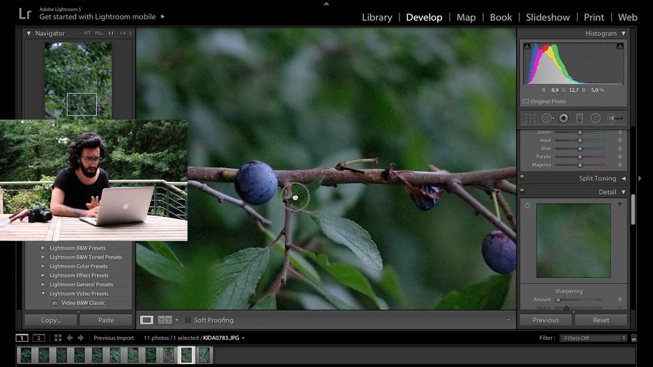 Kinlake-Botanical-Course-Still-1