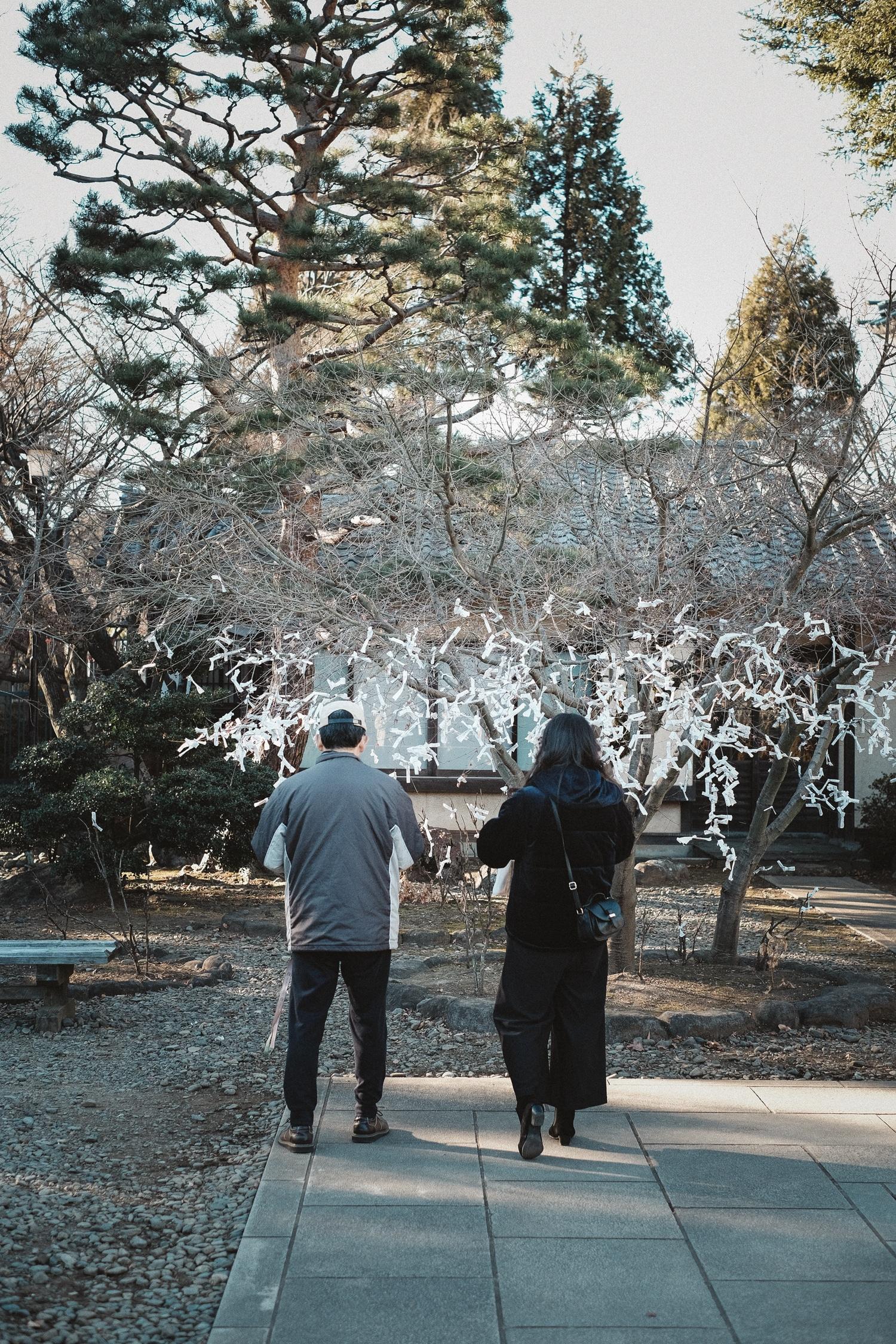Kinlake-Lifestyle-Japan-2018-4784