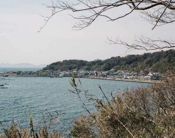 Kinlake-Japan-Cat-Island-5773