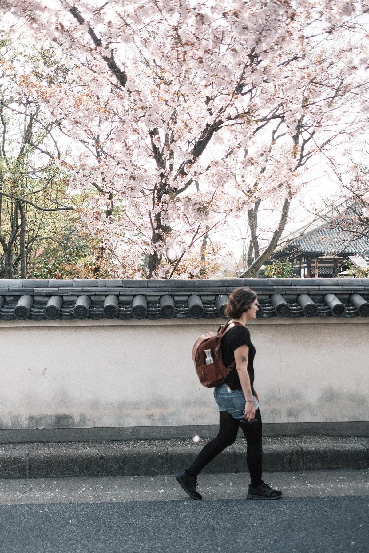Kinlake-Kyoto-Lifestyle-2018-7499